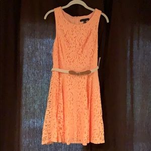 Dresses & Skirts - NWT Sweet Tangerine Lace Dress with belt